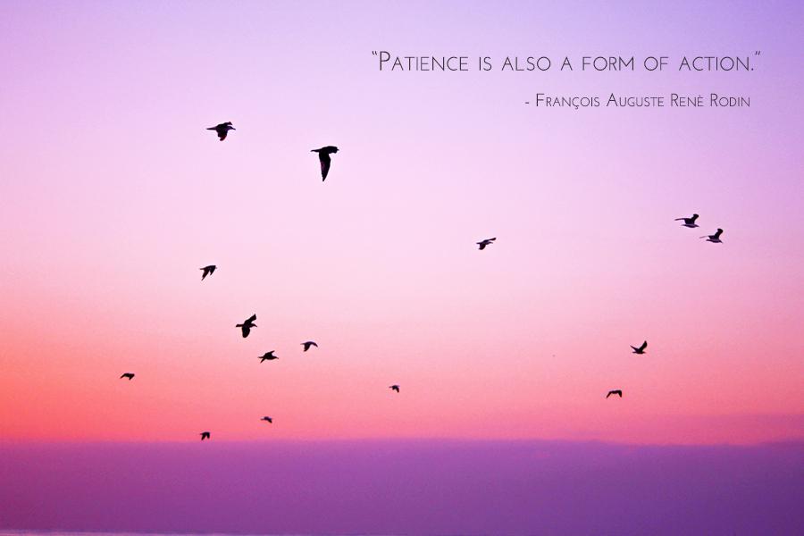 patience_flock_4x6