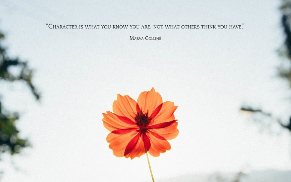 6 Free Wallpapers: Character is What You Know You Are | A Chronic Voice
