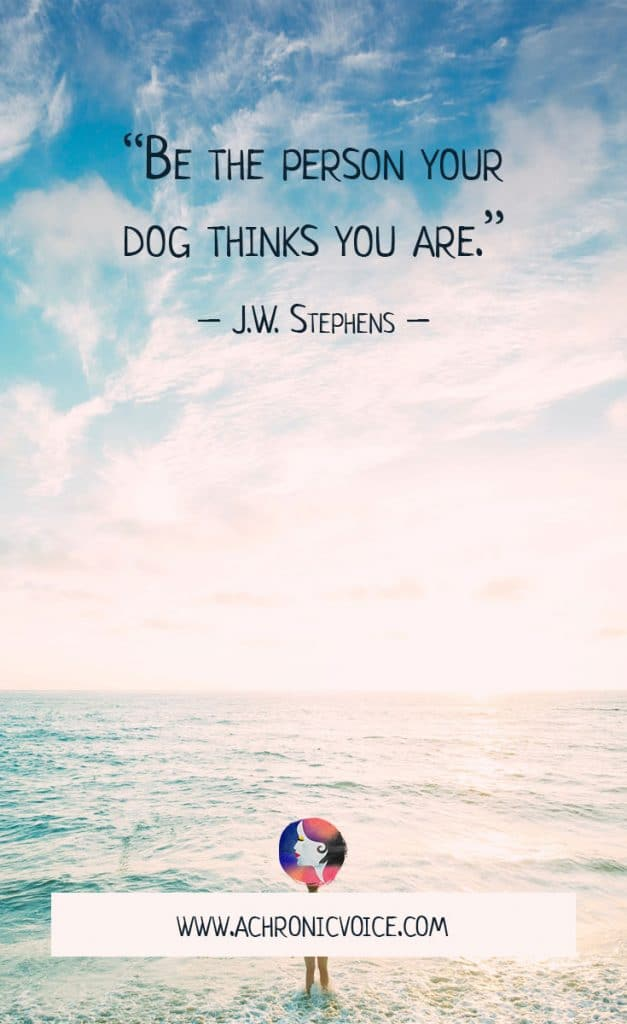 """Download Free Wallpapers: """"Be the person your dog thinks you are."""" - J.W. Stephens 