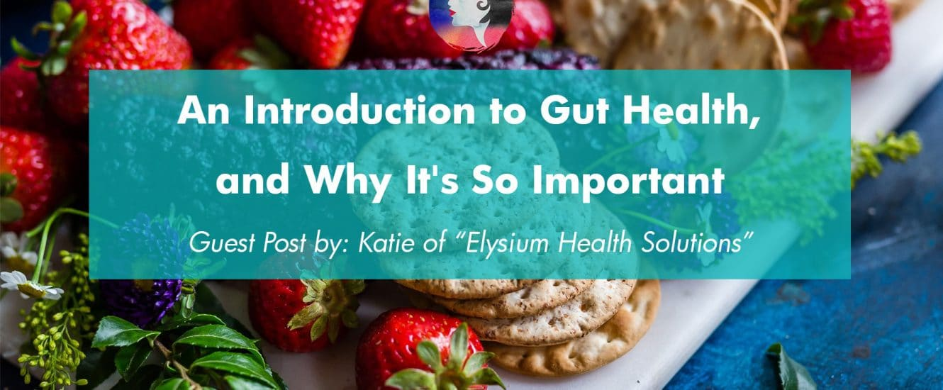 An Introduction to Gut Health, and Why It's so Important | www.achronicvoice.com