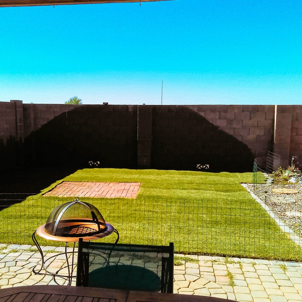 Yard, after.
