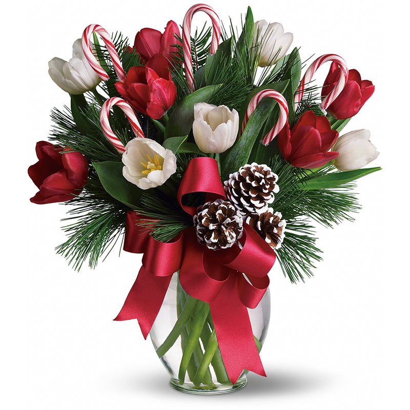 How to Give Christmas Flowers as Gifts