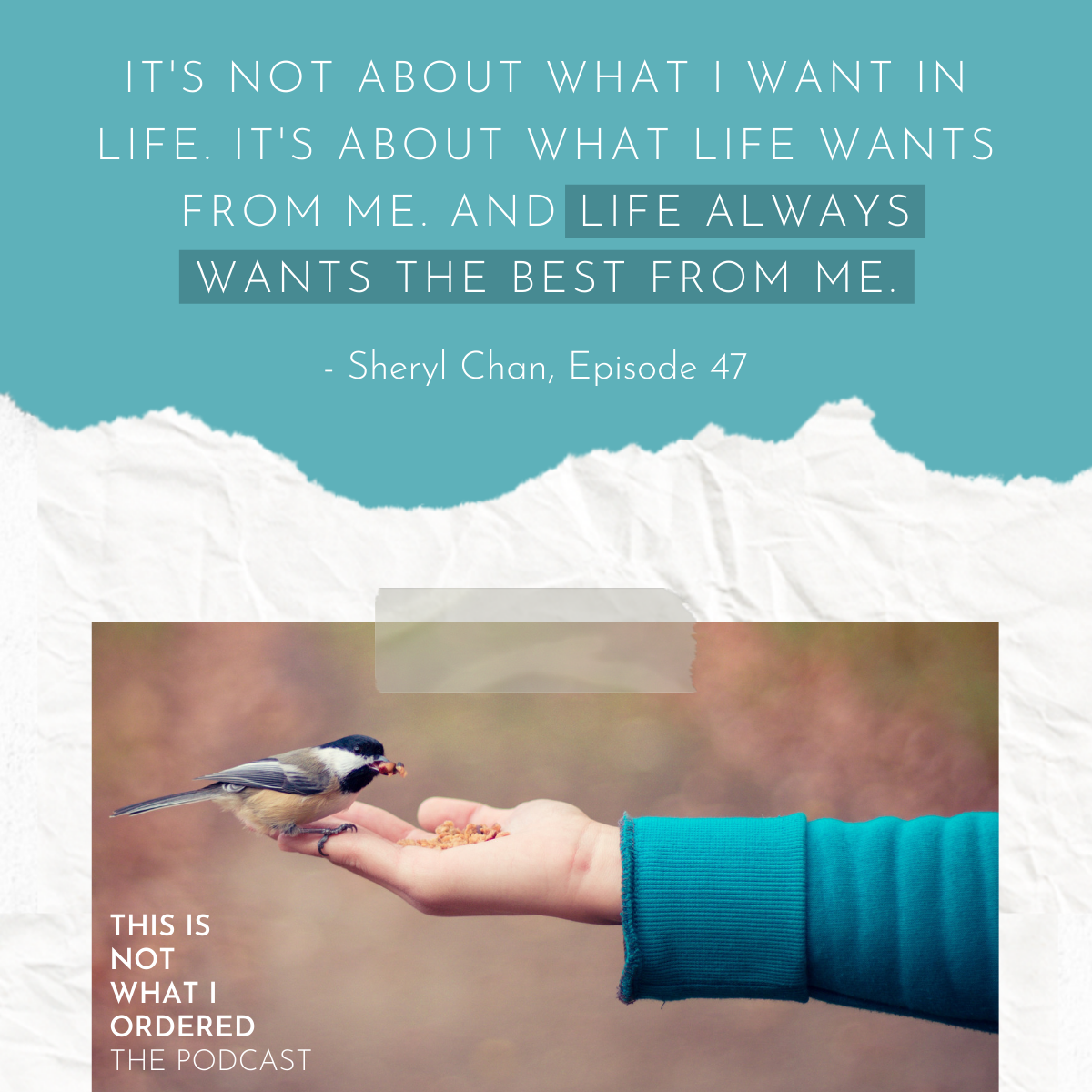 This Is Not What I Ordered, the Podcast, Episode 47: Acceptance Is Power With Sheryl Chan