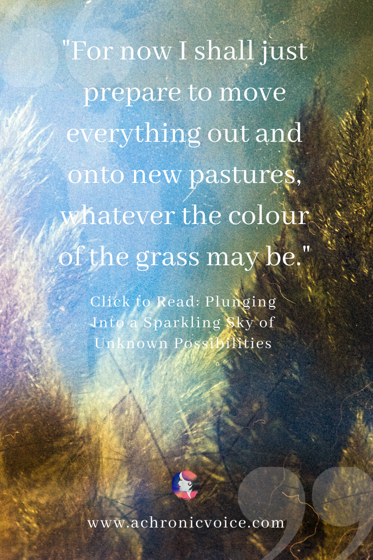 'For now I shall just prepare to move everything out and onto new pastures, whatever the colour of the grass may be.' Pinterest Quote