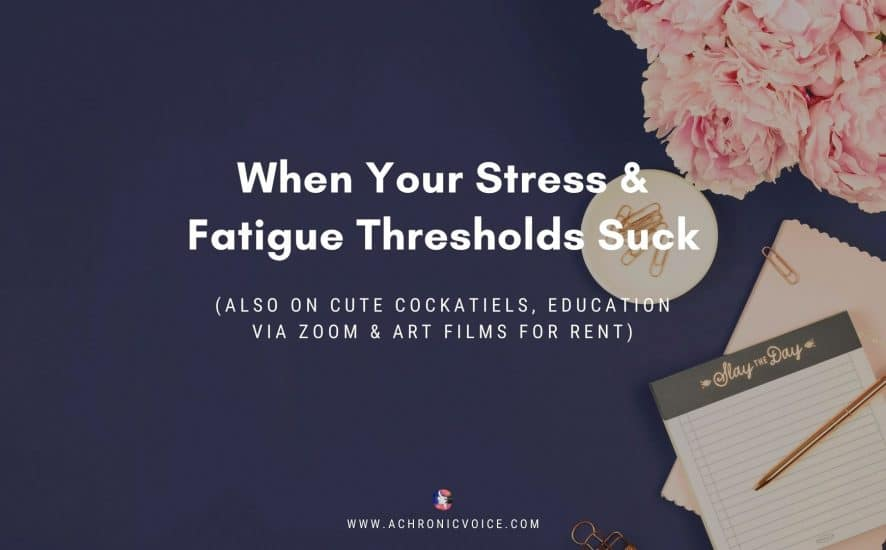 When Your Stress & Fatigue Thresholds Suck (Also on Cute Cockatiels, Education via Zoom & Art Films for Rent) | A Chronic Voice