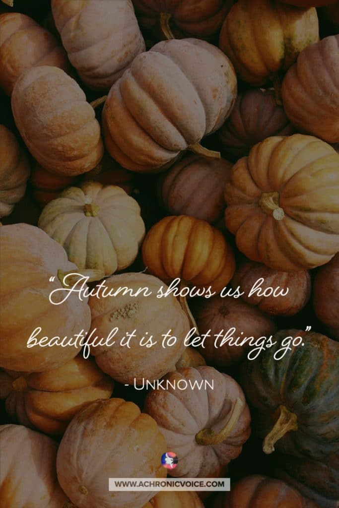 """Autumn shows us how beautiful it is to let things go."" - Unknown"